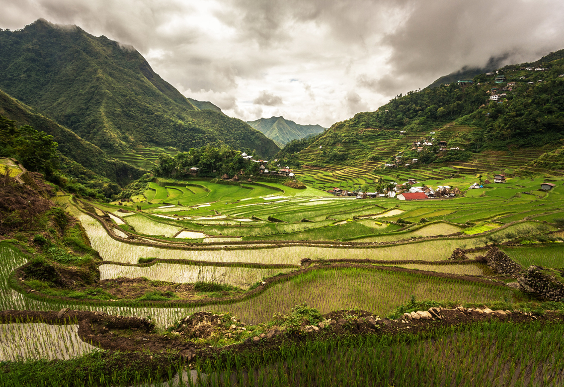 Landscapes human activity Batad rice terraces Philippine Cordilleras UNESCO World Heritage List cultural landscape