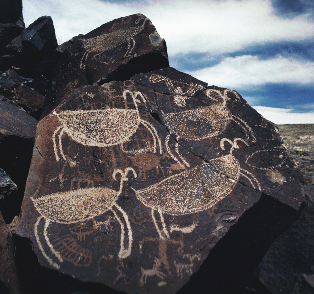 Rock Art of the Cosos