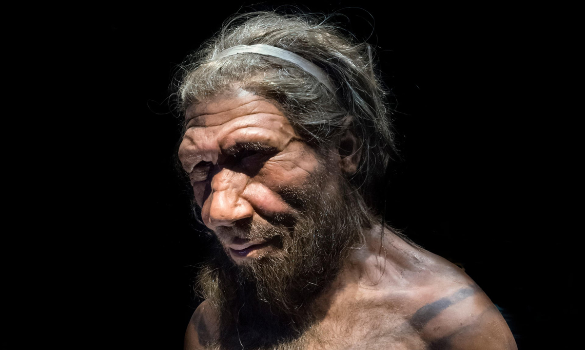 Researchers Neanderthal population modern humans Europe Near East inbreeding natural fluctuations birth rates death sex ratios extinction superior Neanderthals