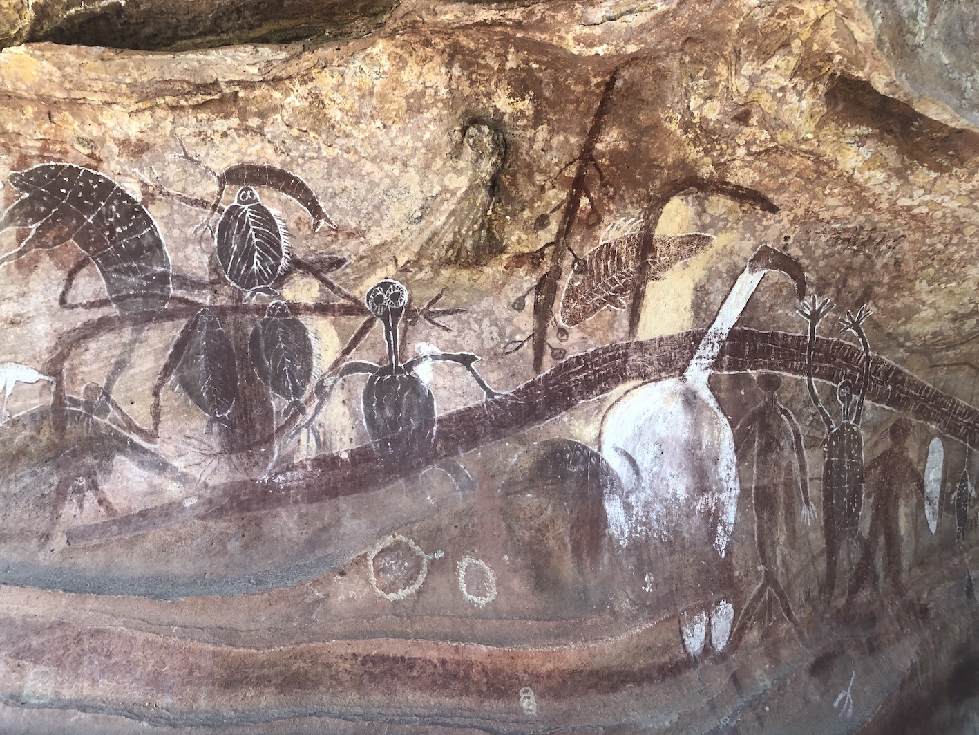 Quinkan Country Griffith University rock art researchers Australia Australian Research Council Linkage Project