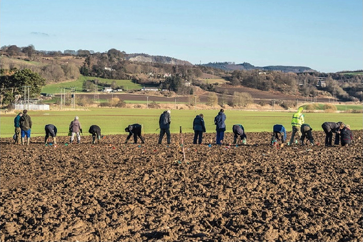 researchers at the site archaeology heritage perth scotland