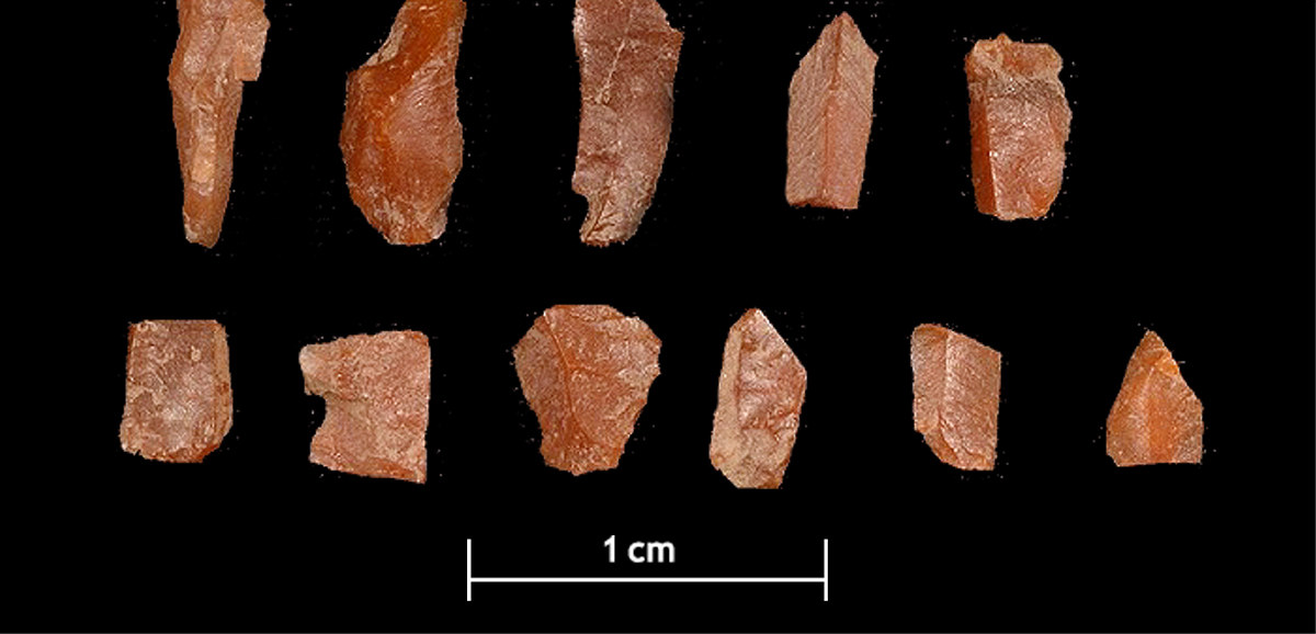 hunter gatherer tools scotland archaeologists mesolithic